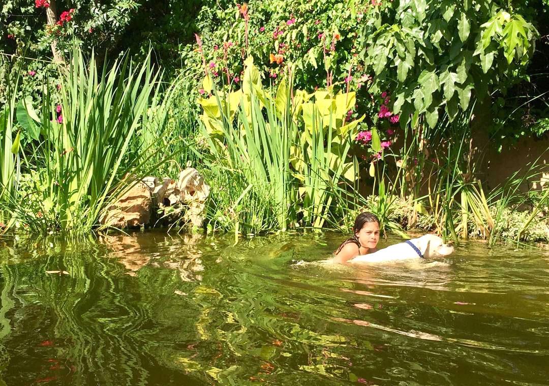 בריכת שחייה גיאומטרית במפלס אחד