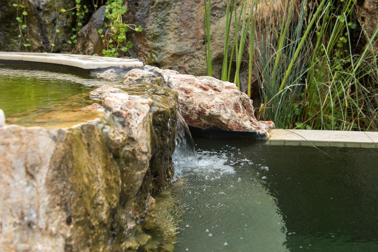 בריכת שחיה טבעית עם בריכת שכשוך וקיר מפלים